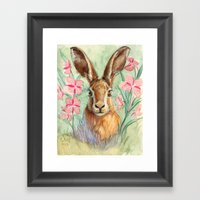 Bunny And Fireweed A089 Framed Art Print