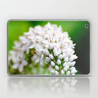 Spring Has Bloomed Laptop & iPad Skin