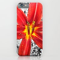 iPhone Cases featuring Red Day Lily in Black, White, and Red by Grace Thanda