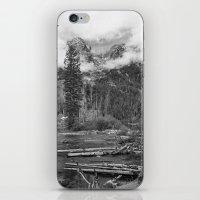 Birch Hallow, Teton Moun… iPhone & iPod Skin