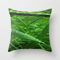 Montana Green Throw Pillow