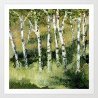 Birches In The Dunes Art Print