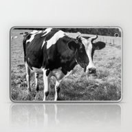 Black And White Cow Laptop & iPad Skin
