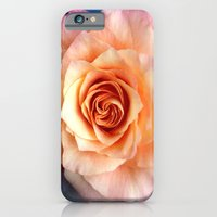 iPhone & iPod Case featuring A Rose for Rosie by Sara Miller