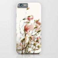 Portraits of Spring - II iPhone 6 Slim Case