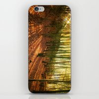 Glittering Forest iPhone & iPod Skin