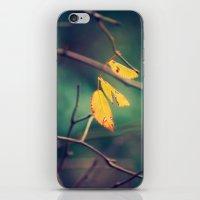 sweet November iPhone & iPod Skin