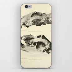 Savor iPhone & iPod Skin