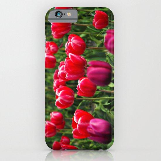 Tulip Love iPhone & iPod Case