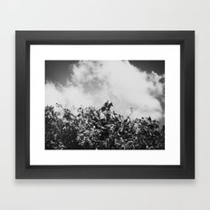 Riding In The Wind Framed Art Print