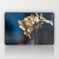 Summer's Ghost II Laptop & iPad Skin