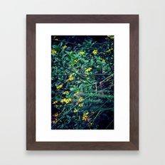 A Flower a Day Keeps the Doctor Away Framed Art Print