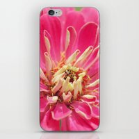 Zinnia & The Ladybug iPhone & iPod Skin