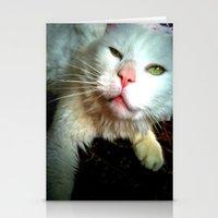 Crazy Kitty Stationery Cards