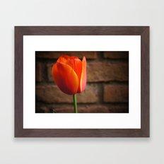 Perfect love Framed Art Print