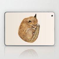 Cosy Laptop & iPad Skin