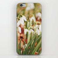Snowdrops iPhone & iPod Skin