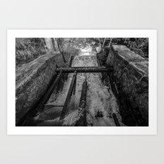 Rush(Black & White) Art Print