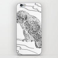 Owl In Tree (Print) iPhone & iPod Skin