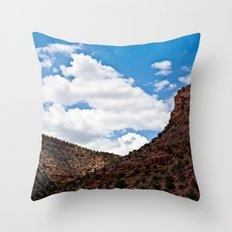 Arizonan Landscape 1 Throw Pillow