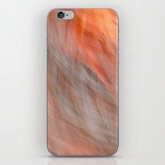 Sunset Time iPhone & iPod Skin