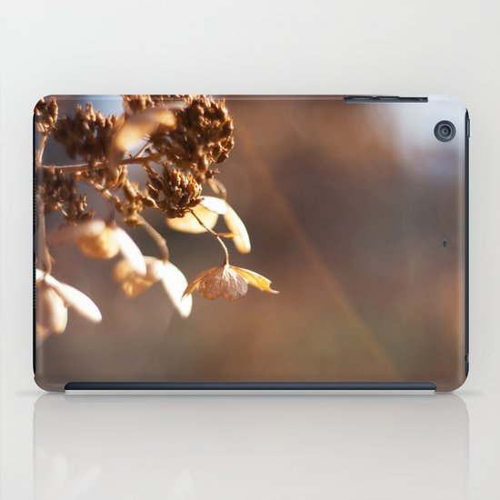 Butterflies in December iPad Case