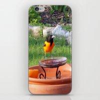 Sweet Orange iPhone & iPod Skin