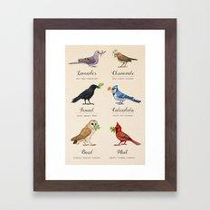 Birds, Herbs, and their Uses Framed Art Print