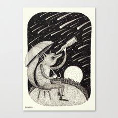 'Meteor Shower' Canvas Print