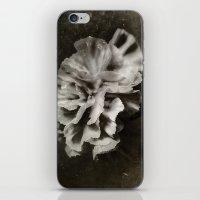 BW Carnation iPhone & iPod Skin