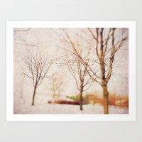 Woodland Dreams Art Print