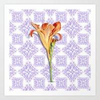 Daylily Lace Art Print