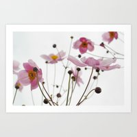 Pink Wild Flowers Art Print
