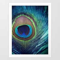 Peacock Feather Art Print