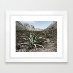 Mexico Century  Framed Art Print