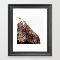 Coco #1 Framed Art Print