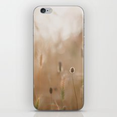 Golden Moments iPhone & iPod Skin