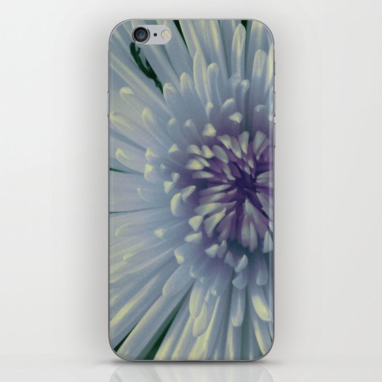 Aster iPhone & iPod Skin