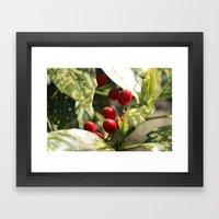 Ohhh Berries :D Framed Art Print