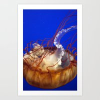 Jelly Fish Love Art Print