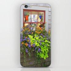 Nantucket Window box iPhone & iPod Skin