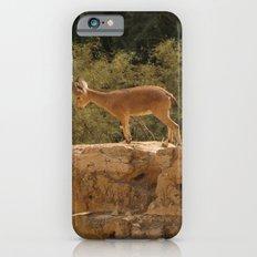 Yael iPhone 6 Slim Case