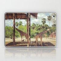 Giraffe Family Laptop & iPad Skin