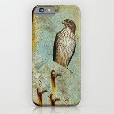 Beach Hawk Slim Case iPhone 6s
