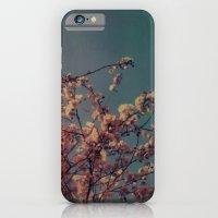 Cherry Blossoms, Polaroid iPhone 6 Slim Case