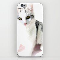 Cloud Cat iPhone & iPod Skin