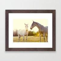 Two Horses Fine Art Phot… Framed Art Print