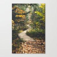 Canyon Path Canvas Print