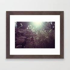 Magical Beings - New Mexico Framed Art Print