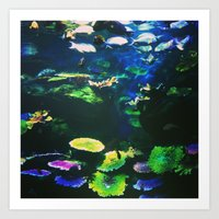 Underwater Paradise Art Print